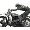 Motorcrosser Bryan Wade schrijft autobiografie!